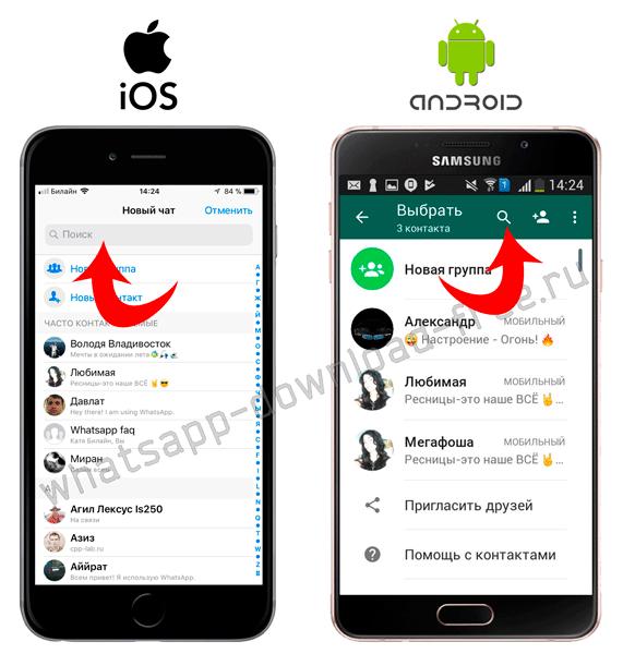 Найти контакт в WhatsApp