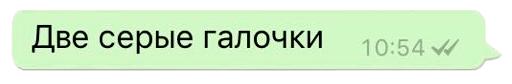 Две серые галочки WhatsApp