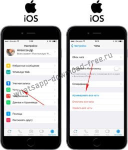Как заархивировать все чаты в WhatsApp на Iphone