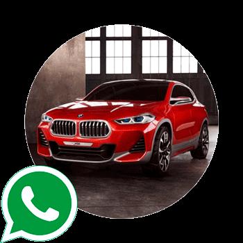 WhatsApp Avinfobot иконка
