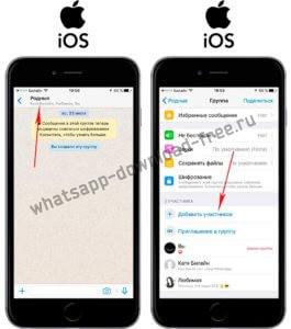 Как доавить контакт в группу WhatsApp на Iphone