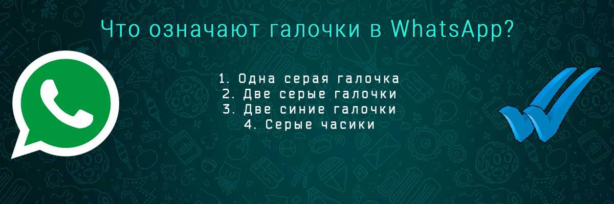 Обозначение галочек в WhatsApp head