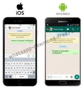 Whatsapp не пришло сообщение серые часики