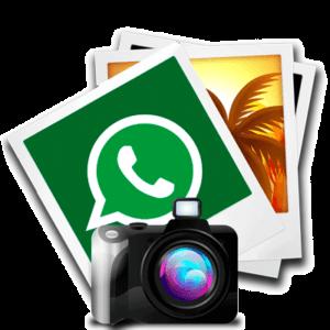 whatsapp отправить фото logo
