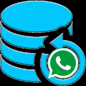 Резервная копия whatsapp logo