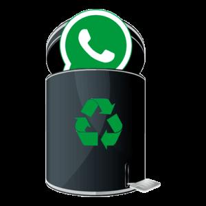Восстановление WhatsApp после удаления лого