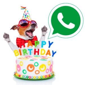 Иконка день рождения WhatsApp