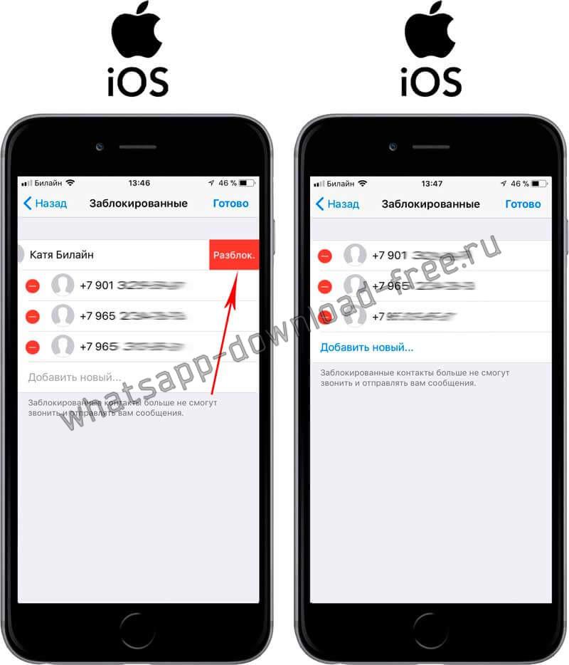 Исключить из черного списка в WhatsApp на Iphone второй метод