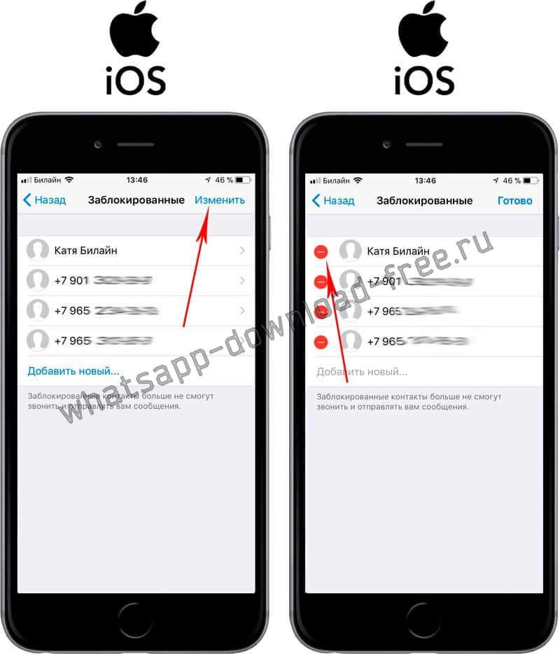 Исключить из черного списка в WhatsApp на Iphone