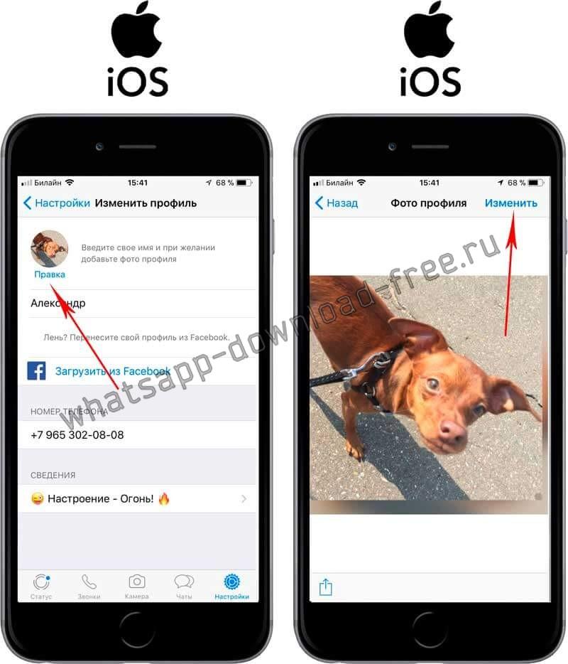 Установить картинку на аватарку в WhatsApp на Iphone Правка