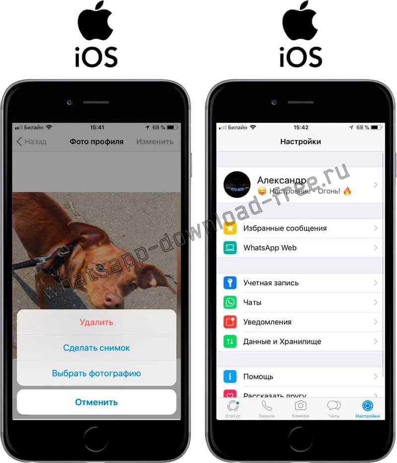 Установить картинку на аватарку в WhatsApp на Iphone Выбор