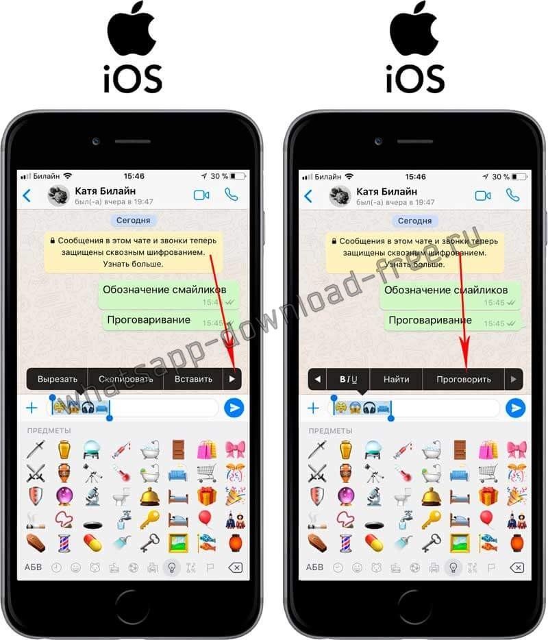 Проговорить текст в WhatsApp на Iphone