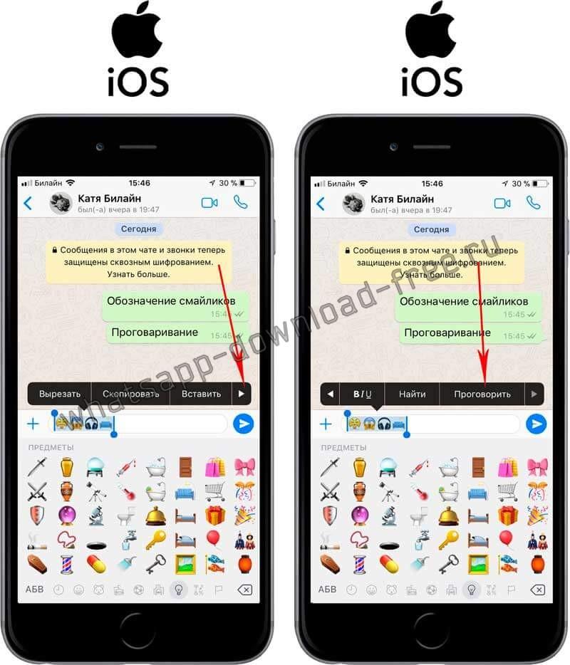 Проговорить текст в WhatsApp на Iphone