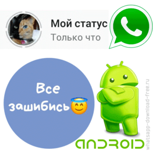 Статус в WhatsApp на Android иконка