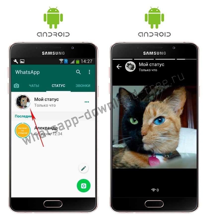 Проверка статуса в WhatsApp
