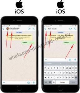 Проверить заблокирован ли контакт в WhatsApp на Iphone