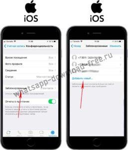 Заблокировать контакт в WhatsApp на Iphone настройки