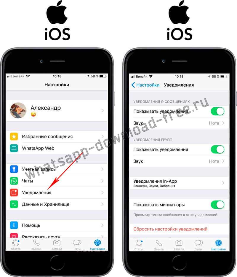 Настройки уведомлений в WhatsApp на Iphone
