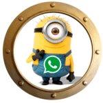 Как поставить картинку на аватарку в WhatsApp?
