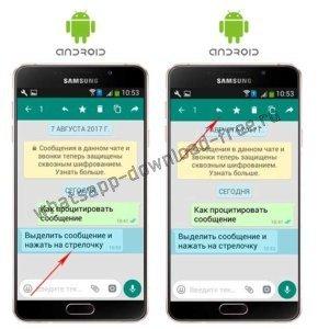 Как процитировать в WhatsApp на Android