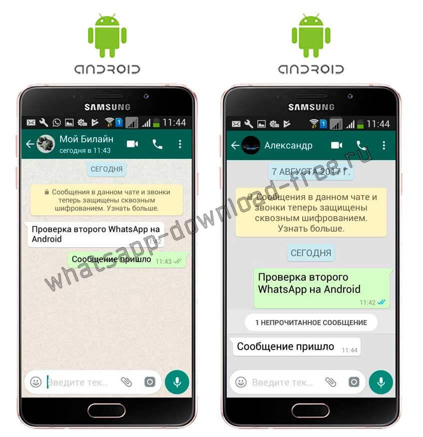Проверка работоспособности два WhatsApp