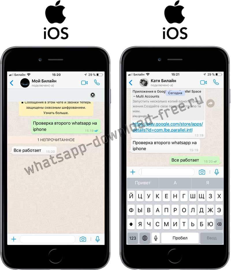 Проверка отправки сообщений в WhatsApp+ на Iphone
