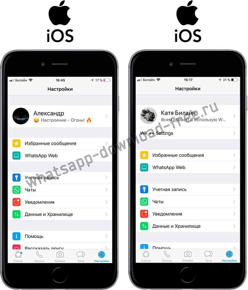 Два WhatsApp на Iphone окно Настроек сравнение