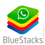 whatsapp bluestacks icon