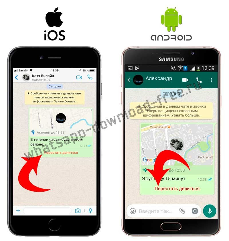 Перестать делиться геоданными в WhatsApp
