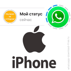 Статус фото в WhatsApp Iphone logo