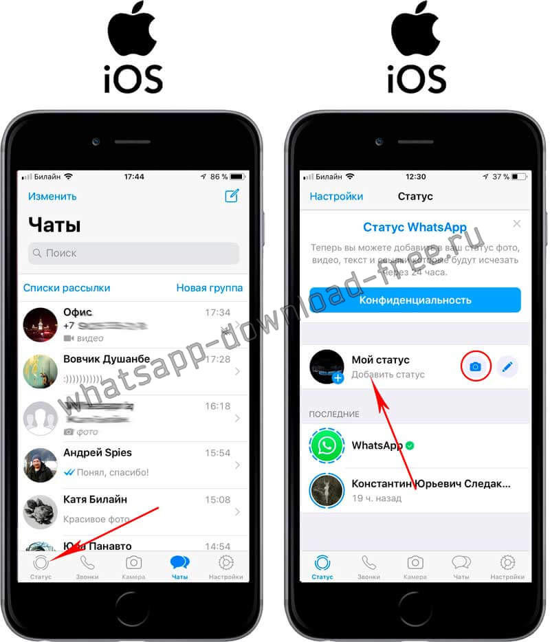 Настройки статуса в WhatsApp на Iphone