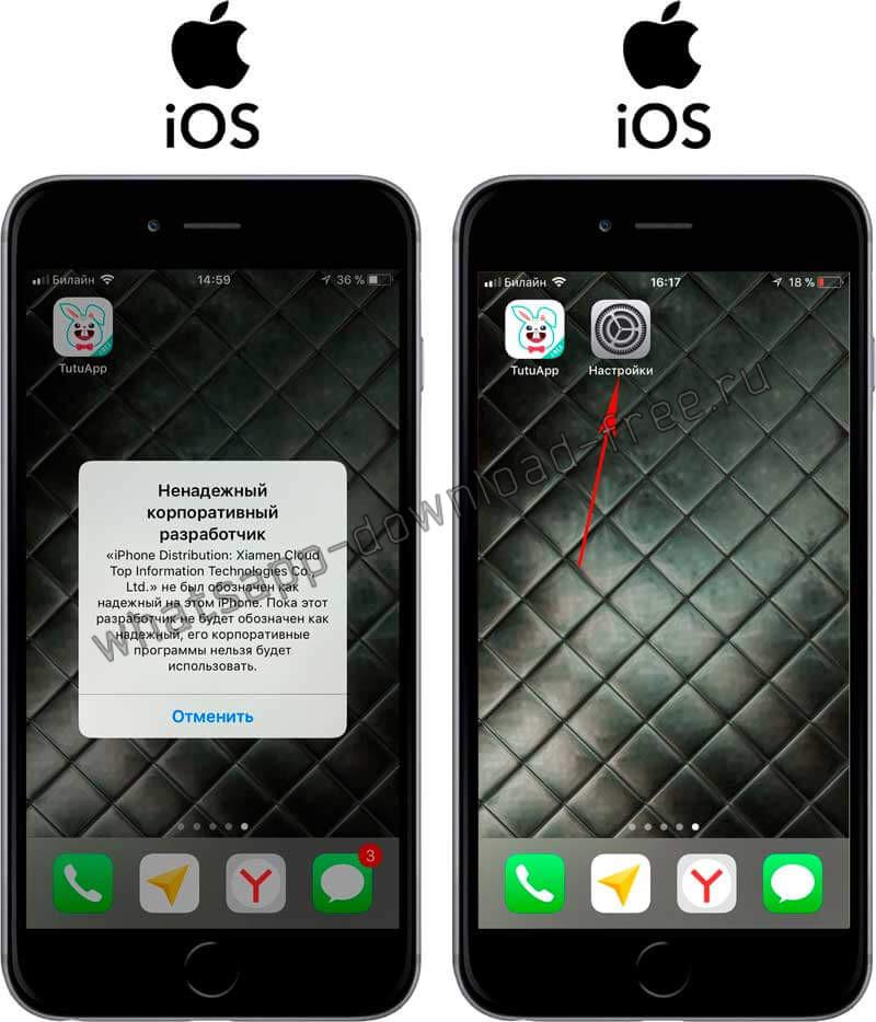 Ошибка при запуске TutuApp на Iphone