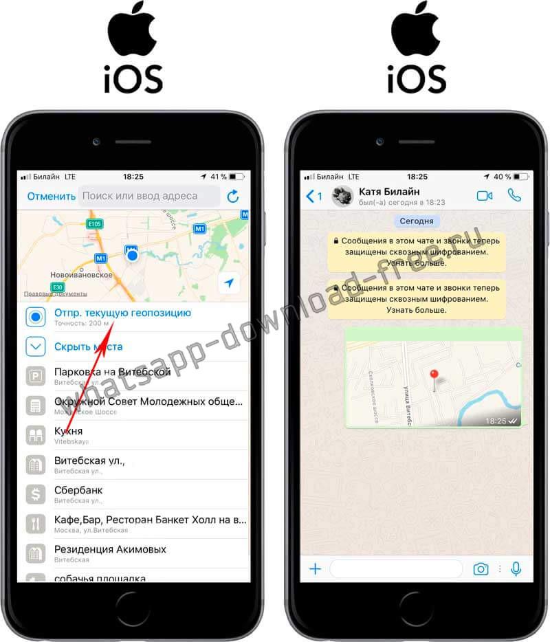 Успешная отправка геолокации в WhatsApp на Iphone