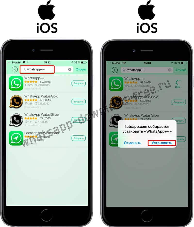 Установка WhatsApp++ на Iphone из TutuApp