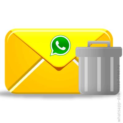 Удалить сообщение в WhatsApp icon